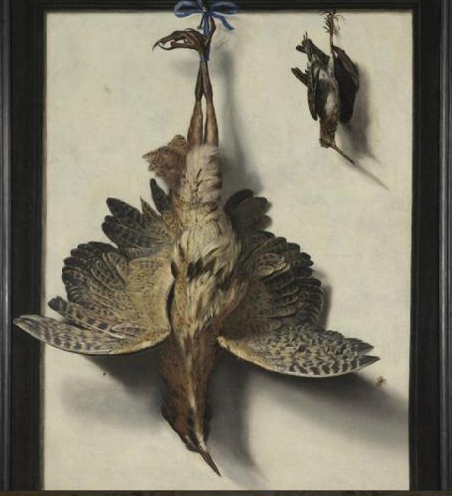 Van Myerop, Stilleven met dode vogels
