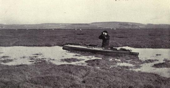 Thomas Evans, Lusitania